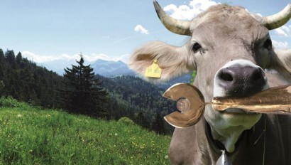 ADAC Tourismuspreis Bayern 2019 & Sonderpreis Nachhaltigkeit 2019!
