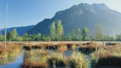 Ammergauer Alpen werden Naturpark
