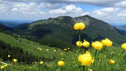 BayernTourNatur: Bayerns größte Umweltbildungsaktion begeistert 80.000 Menschen