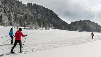 Förderung von Loipenspur- und Wanderwegepfleggeräte