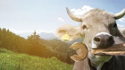 ADAC Tourismuspreis Bayern 2021: Sonderpreis Re-Start